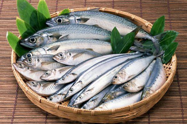 hranit-svezuyu-ribu